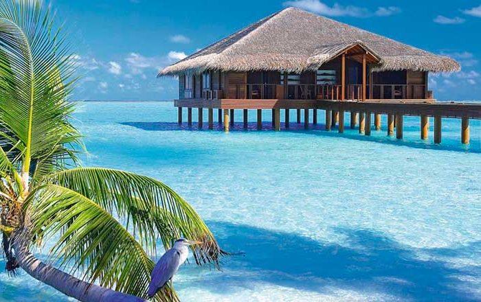 مالدیو ویژه زمستان 1399